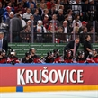 PRAGUE, CZECH REPUBLIC - MAY 14: Canadian players and coaches look on from the bench during quarterfinal round action against Belarus at the 2015 IIHF Ice Hockey World Championship. (Photo by Andre Ringuette/HHOF-IIHF Images)